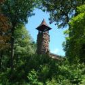 Bell Tower Among Trees